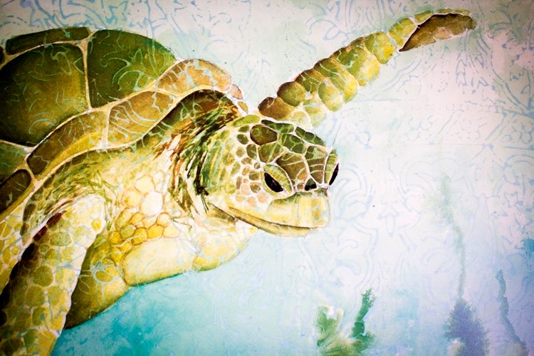 Green Sea Turtle' Print from a watercolour with Indonesian wood block print background - A BVI Art Gallery with a Difference