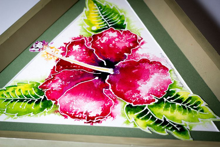 Red Hibiscus' in a pale gold frame - A BVI Art Gallery with a Difference